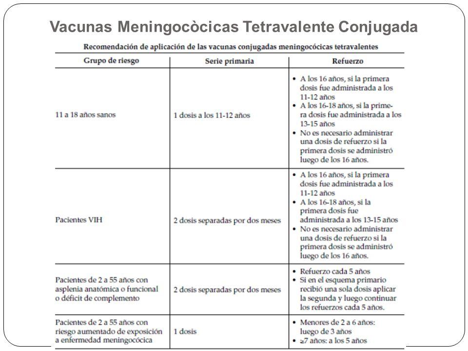 Vacuna conjugada monovalente contra serotipo C: Proteína transportadora: toxoide tetánico o tx diftérico CRM 197 Edad: Niños de 2-12 meses: 2 dosis, IM, región anterolateral del muslo.