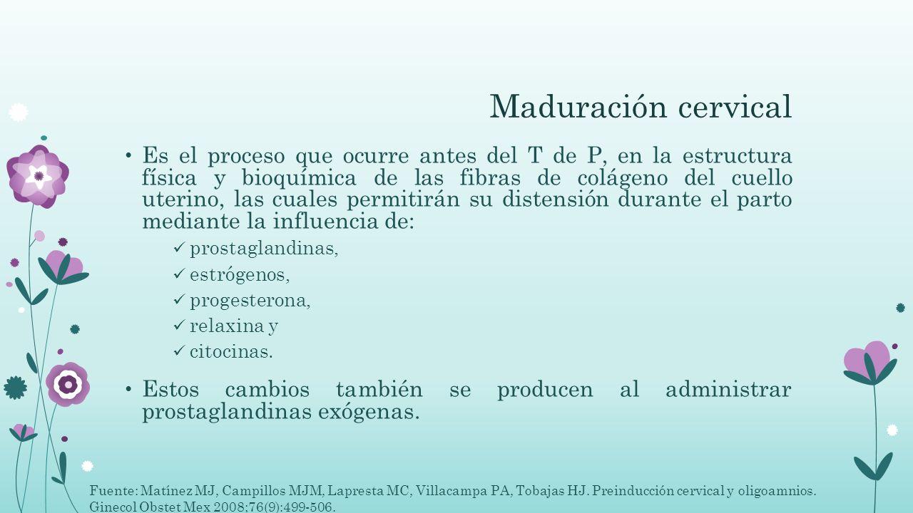 Maduración cervical Es el proceso que ocurre antes del T de P, en la estructura física y bioquímica de las fibras de colágeno del cuello uterino, las