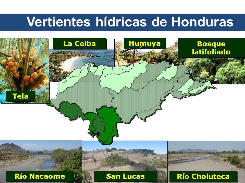 Humuya Bosque latifoliado Río Nacaome Río Choluteca San Lucas Tela La Ceiba Vertientes hídricas de Honduras