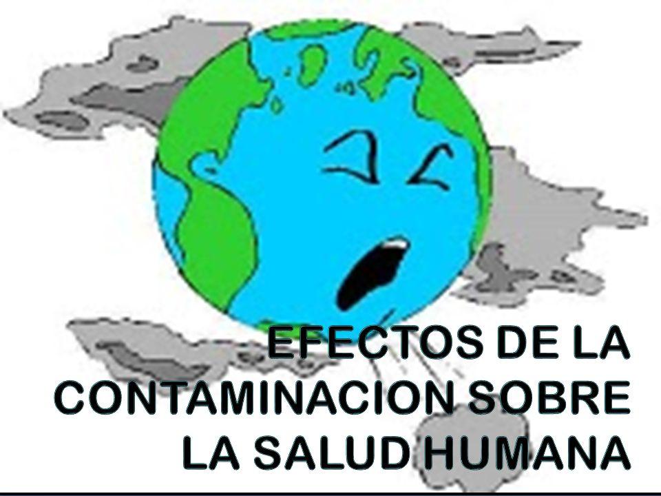 La contaminación atmosférica constituye un riesgo medioambiental para la salud y se estima que causa alrededor de dos millones de muertes prematuras al año en todo el mundo.