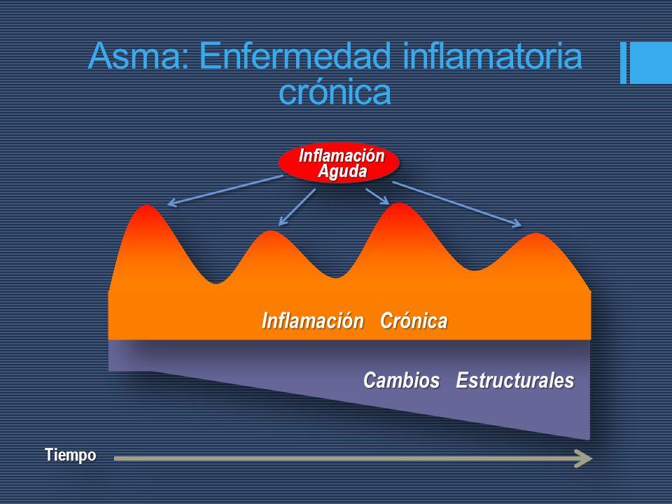 TiempoTiempo Asma: Enfermedad inflamatoria crónica