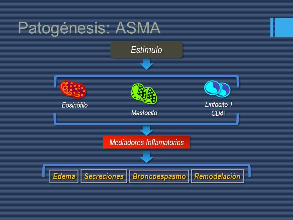 Mediadores Inflamatorios BroncoespasmoBroncoespasmoEdemaEdema SecrecionesSecrecionesRemodelaciónRemodelación Patogénesis: ASMA
