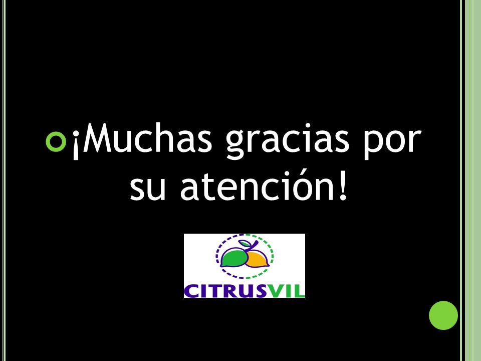 ¡Muchas gracias por su atención!