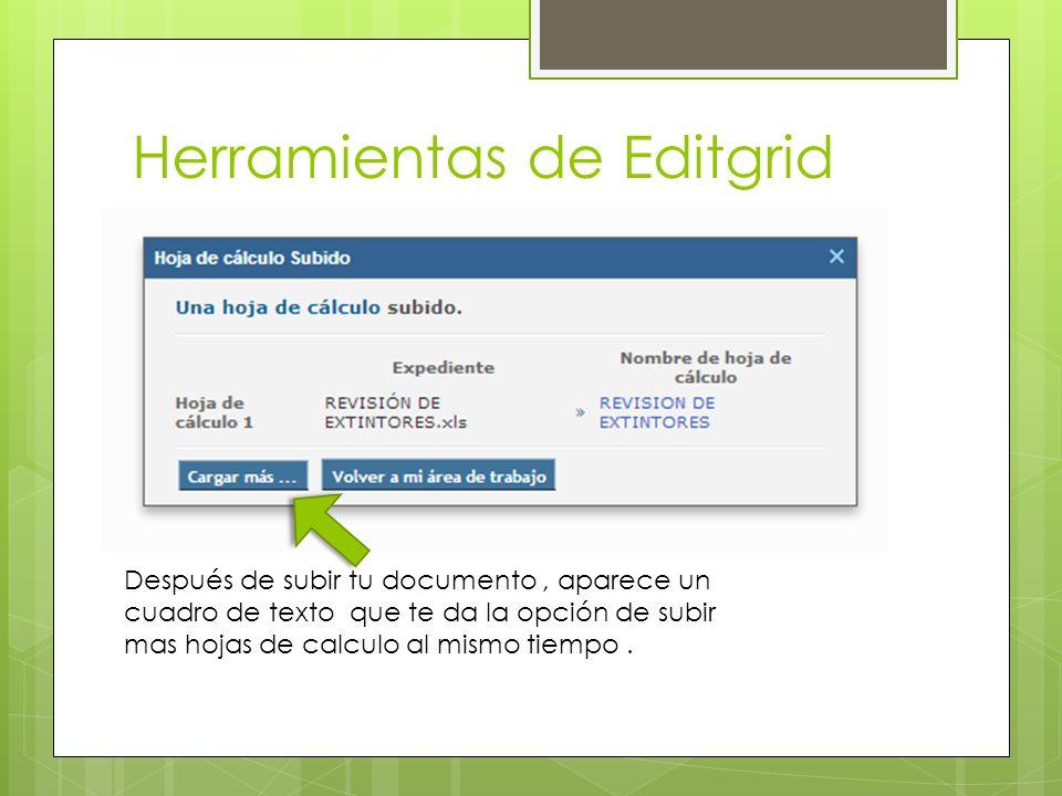 Herramientas de Editgrid Después de subir tu documento, aparece un cuadro de texto que te da la opción de subir mas hojas de calculo al mismo tiempo.