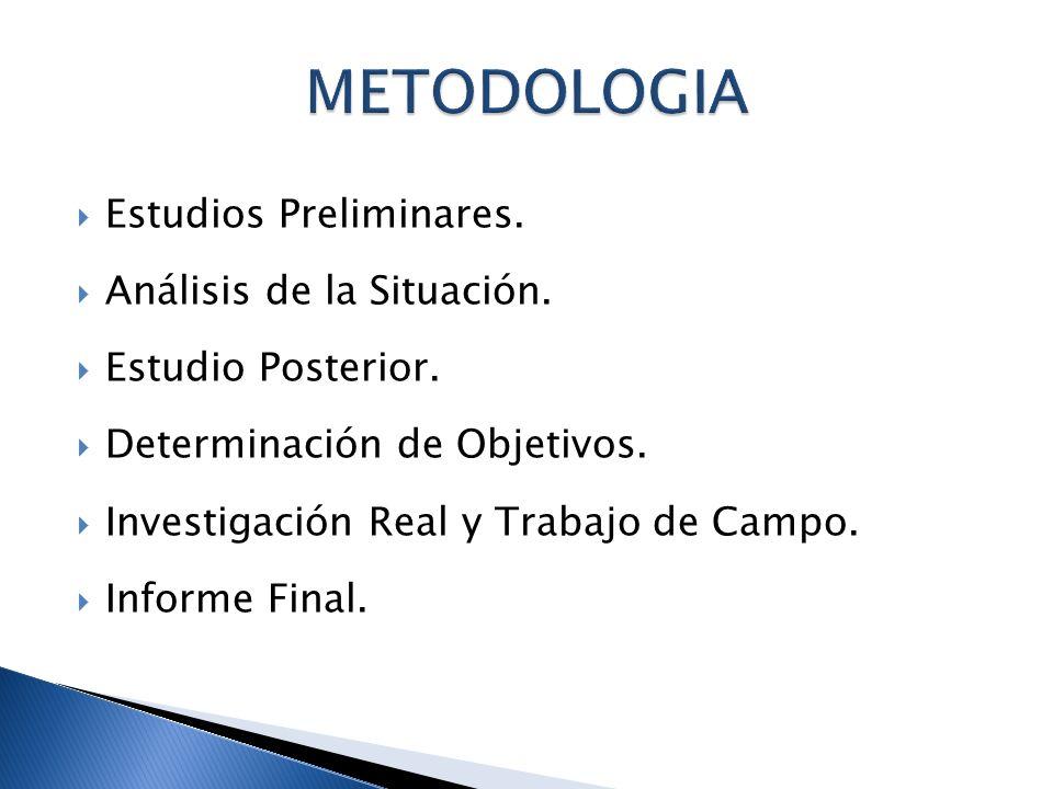 Estudios Preliminares. Análisis de la Situación. Estudio Posterior. Determinación de Objetivos. Investigación Real y Trabajo de Campo. Informe Final.