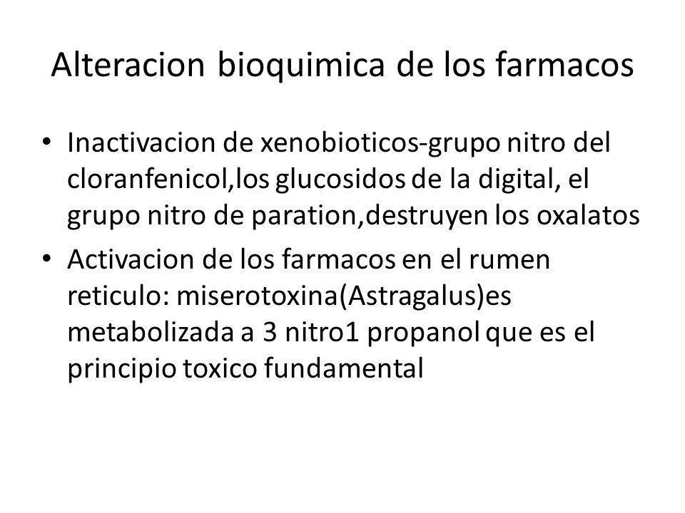 Alteracion bioquimica de los farmacos Inactivacion de xenobioticos-grupo nitro del cloranfenicol,los glucosidos de la digital, el grupo nitro de parat