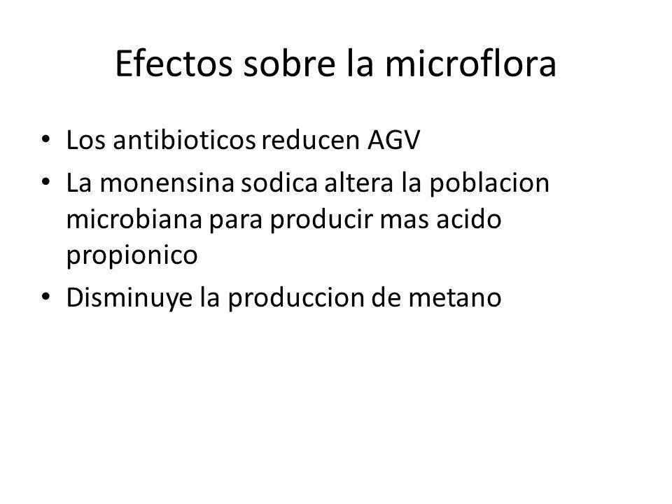 Efectos sobre la microflora Los antibioticos reducen AGV La monensina sodica altera la poblacion microbiana para producir mas acido propionico Disminu