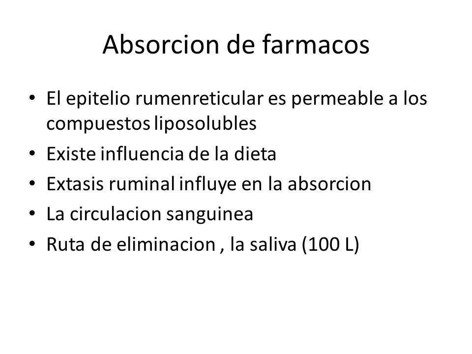 Absorcion de farmacos El epitelio rumenreticular es permeable a los compuestos liposolubles Existe influencia de la dieta Extasis ruminal influye en l