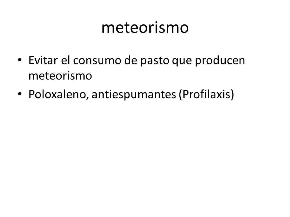 meteorismo Evitar el consumo de pasto que producen meteorismo Poloxaleno, antiespumantes (Profilaxis)