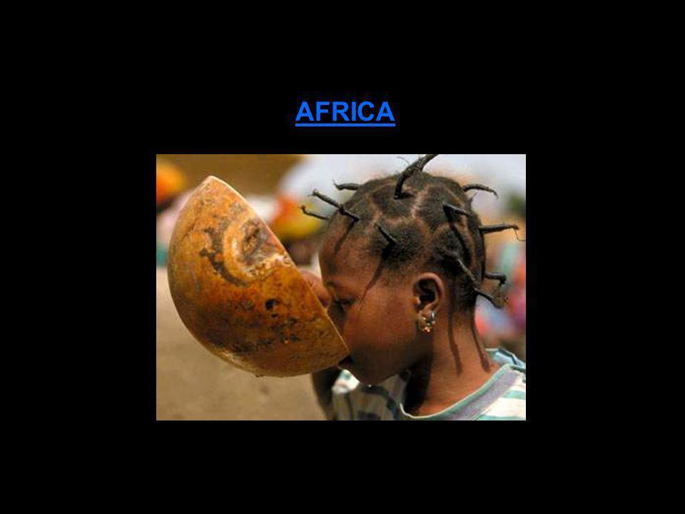 NOSOTROS LOS ILEGALES somos responsables de esta barbarie, de esta situación mundial de pobreza y malnutrición, de caos y desolación, de genocidio pla