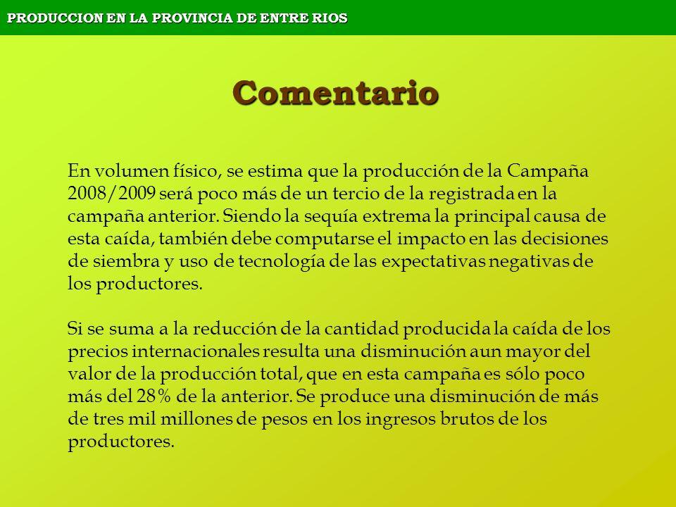 PRODUCCION EN LA PROVINCIA DE ENTRE RIOS Comentario En volumen físico, se estima que la producción de la Campaña 2008/2009 será poco más de un tercio