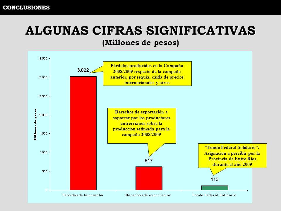 CONCLUSIONES ALGUNAS CIFRAS SIGNIFICATIVAS (Millones de pesos) Pérdidas producidas en la Campaña 2008/2009 respecto de la campaña anterior, por sequía