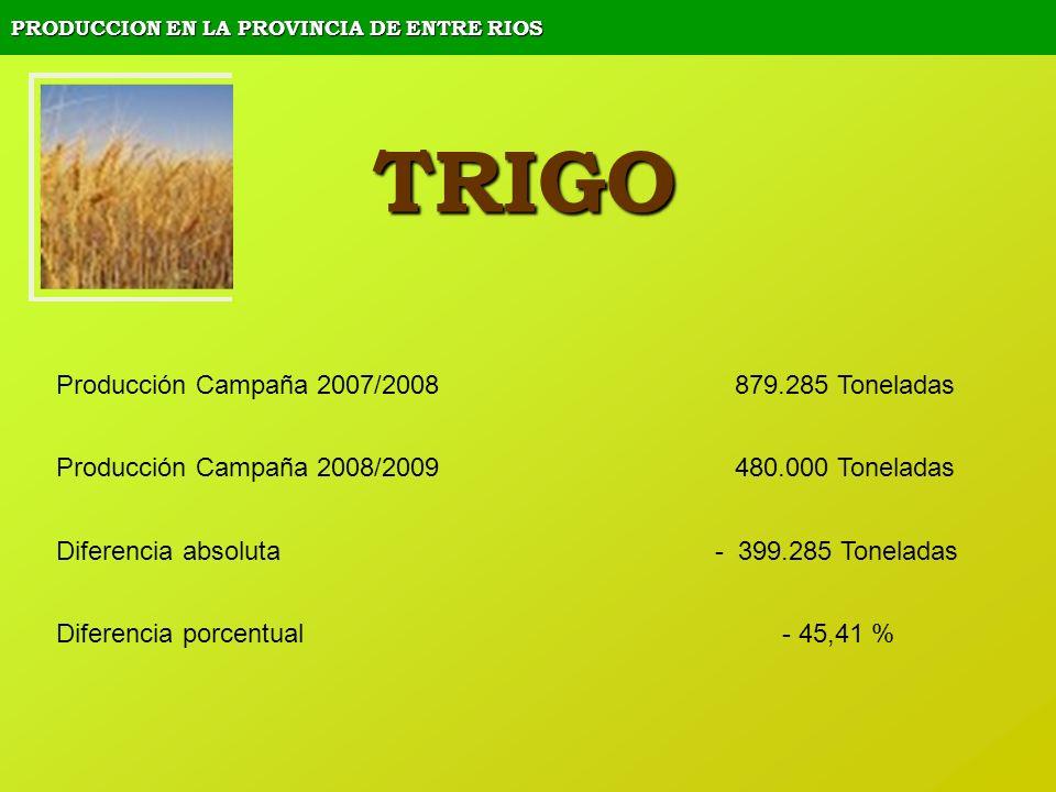 PRODUCCION EN LA PROVINCIA DE ENTRE RIOS TRIGO Producción Campaña 2007/2008 879.285 Toneladas Producción Campaña 2008/2009 480.000 Toneladas Diferenci