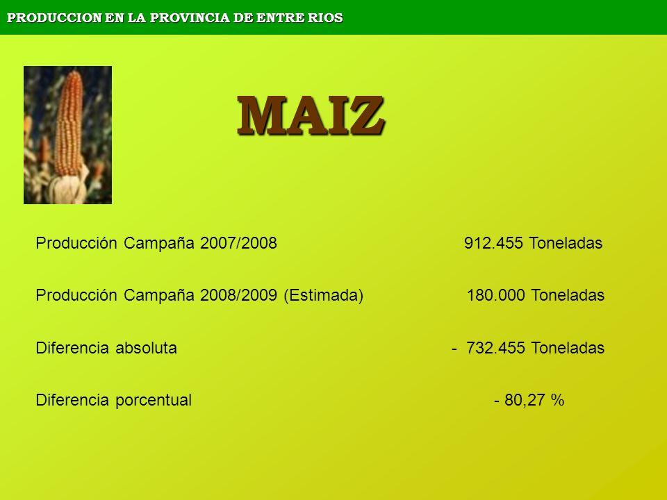 PRODUCCION EN LA PROVINCIA DE ENTRE RIOS MAIZ Producción Campaña 2007/2008 912.455 Toneladas Producción Campaña 2008/2009 (Estimada) 180.000 Toneladas