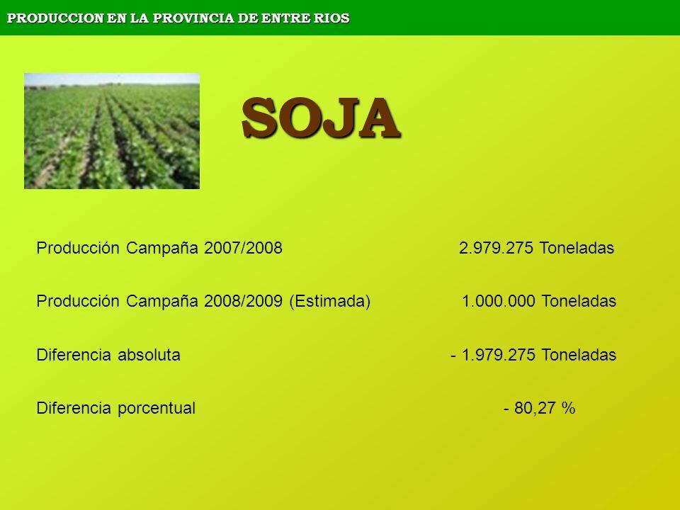 PRODUCCION EN LA PROVINCIA DE ENTRE RIOS SOJA Producción Campaña 2007/2008 2.979.275 Toneladas Producción Campaña 2008/2009 (Estimada) 1.000.000 Tonel