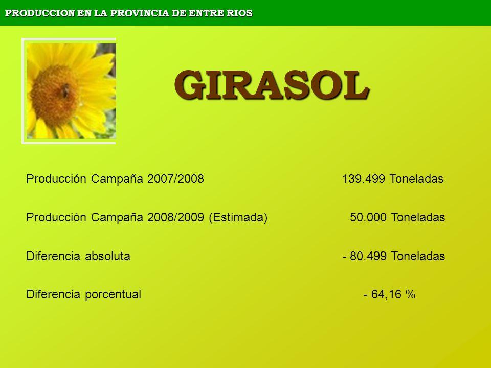 PRODUCCION EN LA PROVINCIA DE ENTRE RIOS GIRASOL Producción Campaña 2007/2008 139.499 Toneladas Producción Campaña 2008/2009 (Estimada) 50.000 Tonelad