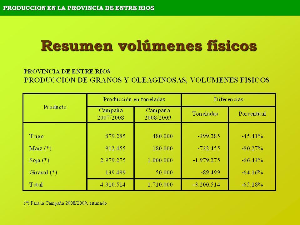 PRODUCCION EN LA PROVINCIA DE ENTRE RIOS Resumen volúmenes físicos