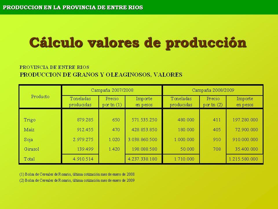 PRODUCCION EN LA PROVINCIA DE ENTRE RIOS Cálculo valores de producción