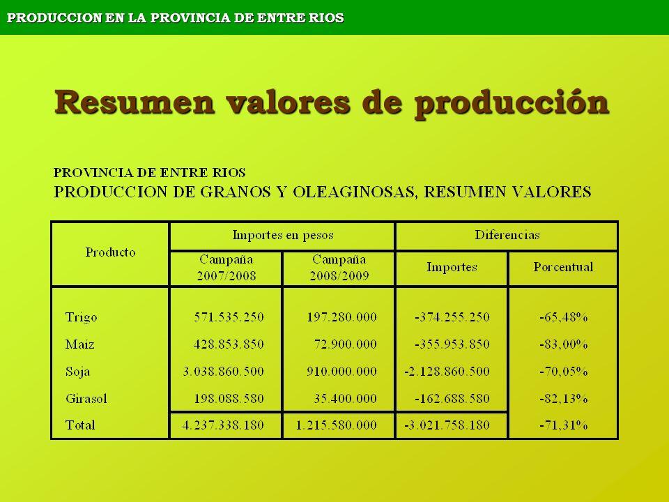 PRODUCCION EN LA PROVINCIA DE ENTRE RIOS Resumen valores de producción