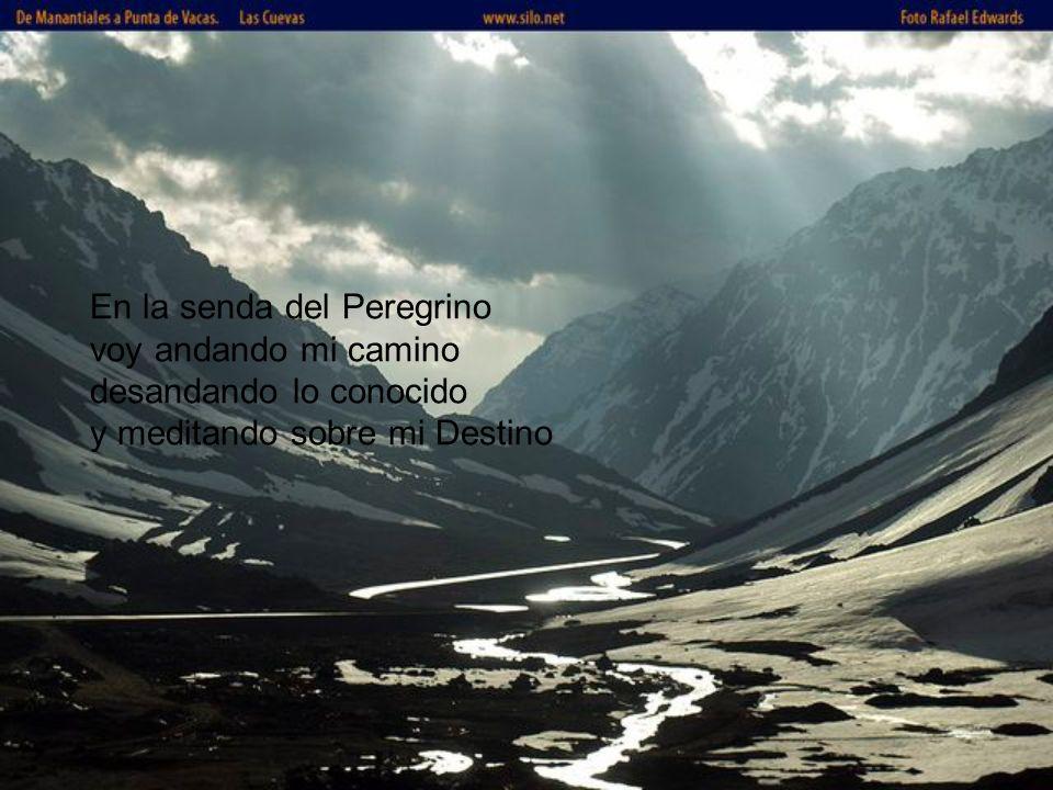En la senda del Peregrino voy andando mi camino desandando lo conocido y meditando sobre mi Destino