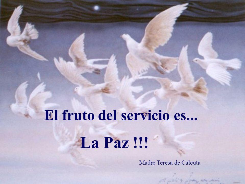 El fruto del silencio es la oración El fruto de la oración es la fe El fruto de la fe es el amor El fruto del amor...es el servicio.