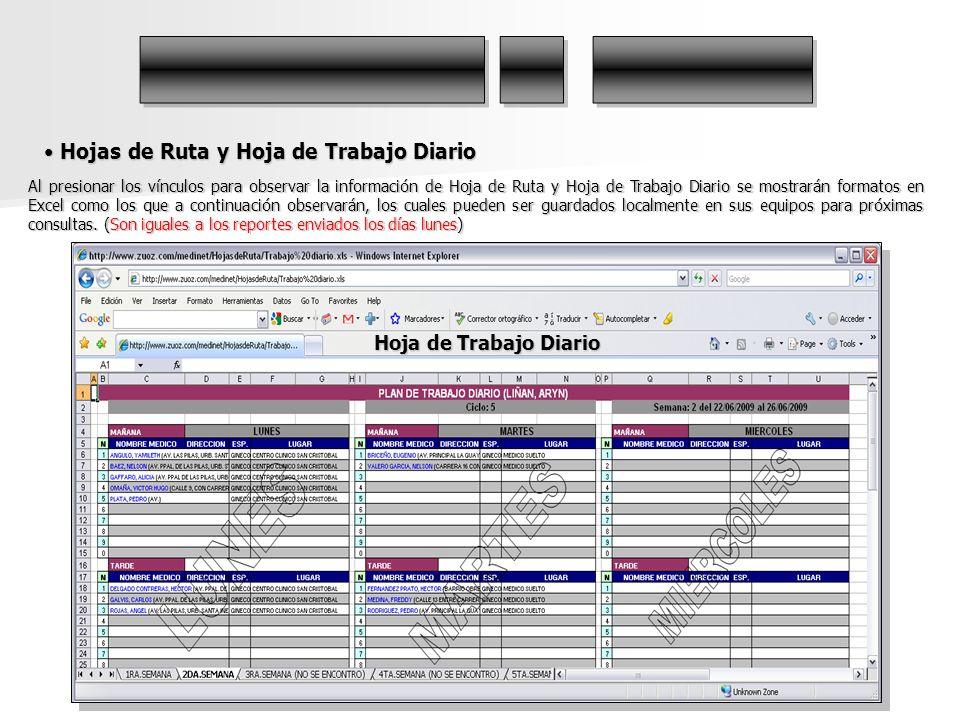 Hojas de Ruta y Hoja de Trabajo Diario Hojas de Ruta y Hoja de Trabajo Diario Al presionar los vínculos para observar la información de Hoja de Ruta y
