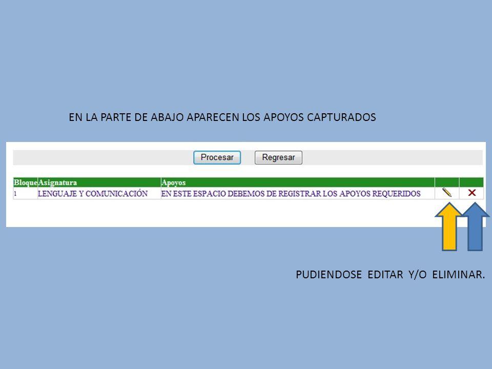 EN LA PARTE DE ABAJO APARECEN LOS APOYOS CAPTURADOS PUDIENDOSE EDITAR Y/O ELIMINAR.