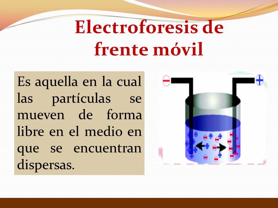 Es aquella en la cual las partículas se mueven de forma libre en el medio en que se encuentran dispersas. Electroforesis de frente móvil