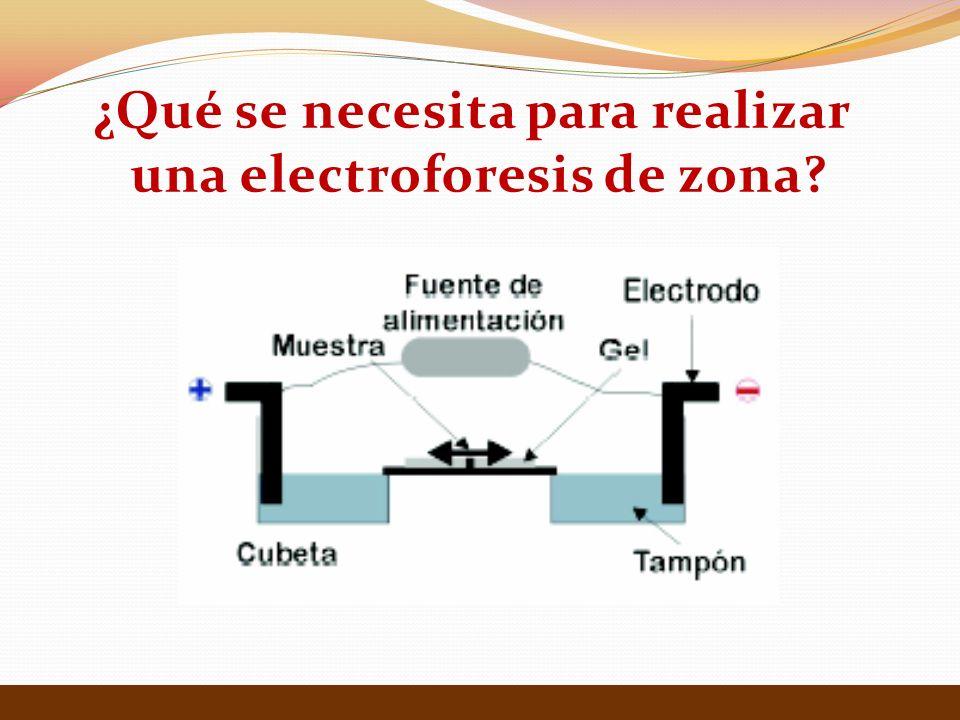 ¿Qué se necesita para realizar una electroforesis de zona?