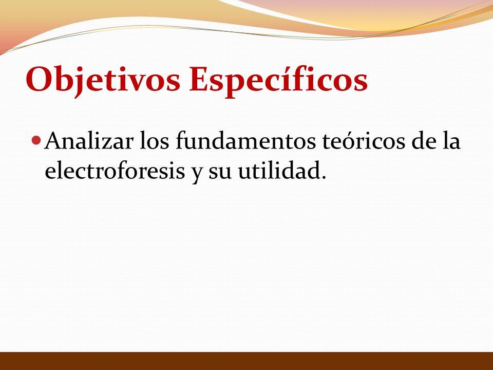 Objetivos Específicos Analizar los fundamentos teóricos de la electroforesis y su utilidad.
