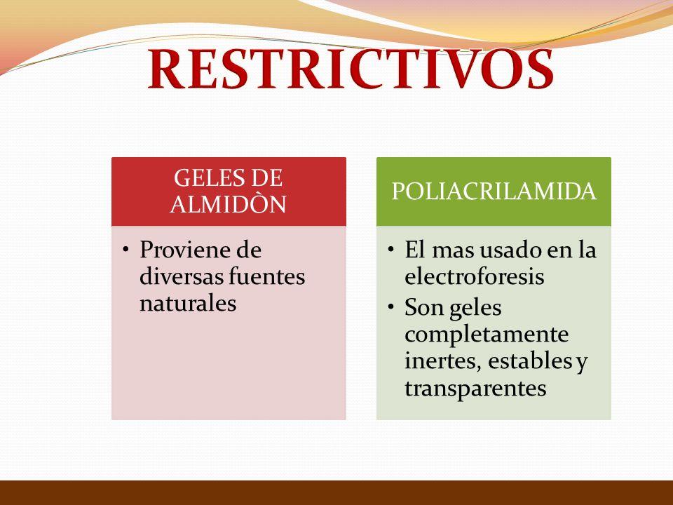 GELES DE ALMIDÒN Proviene de diversas fuentes naturales POLIACRILAMIDA El mas usado en la electroforesis Son geles completamente inertes, estables y t