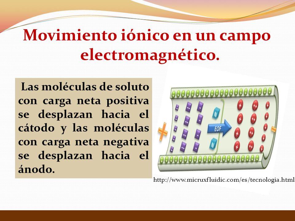 Movimiento iónico en un campo electromagnético. http://www.micruxfluidic.com/es/tecnologia.html Las moléculas de soluto con carga neta positiva se des