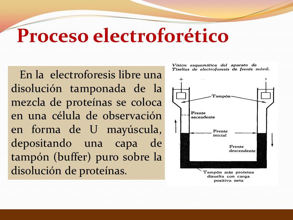 Unidades Horizontales: Cámaras electroforéticas.