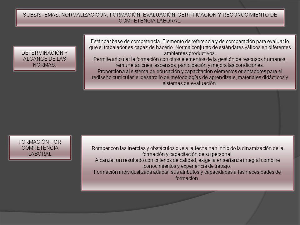 DETERMINACIÓN Y ALCANCE DE LAS NORMAS. Estándar base de competencia. Elemento de referencia y de comparación para evaluar lo que el trabajador es capa