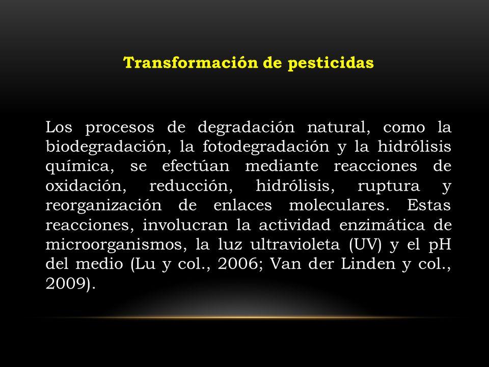 Los procesos de degradación natural, como la biodegradación, la fotodegradación y la hidrólisis química, se efectúan mediante reacciones de oxidación,