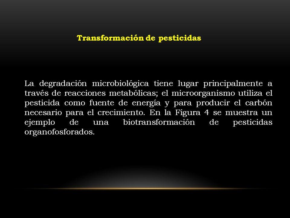 Transformación de pesticidas La degradación microbiológica tiene lugar principalmente a través de reacciones metabólicas; el microorganismo utiliza el