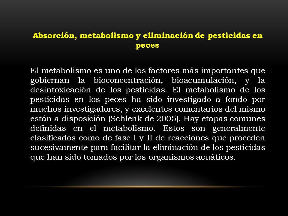 El metabolismo es uno de los factores más importantes que gobiernan la bioconcentración, bioacumulación, y la desintoxicación de los pesticidas. El me