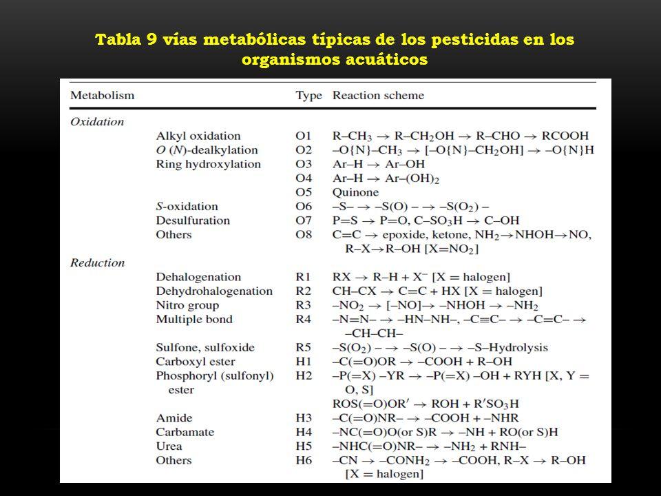 Tabla 9 vías metabólicas típicas de los pesticidas en los organismos acuáticos