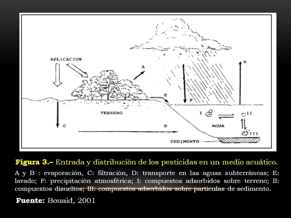 Figura 3.– Entrada y distribución de los pesticidas en un medio acuático. A y B : evaporación, C: filtración, D: transporte en las aguas subterráneas;