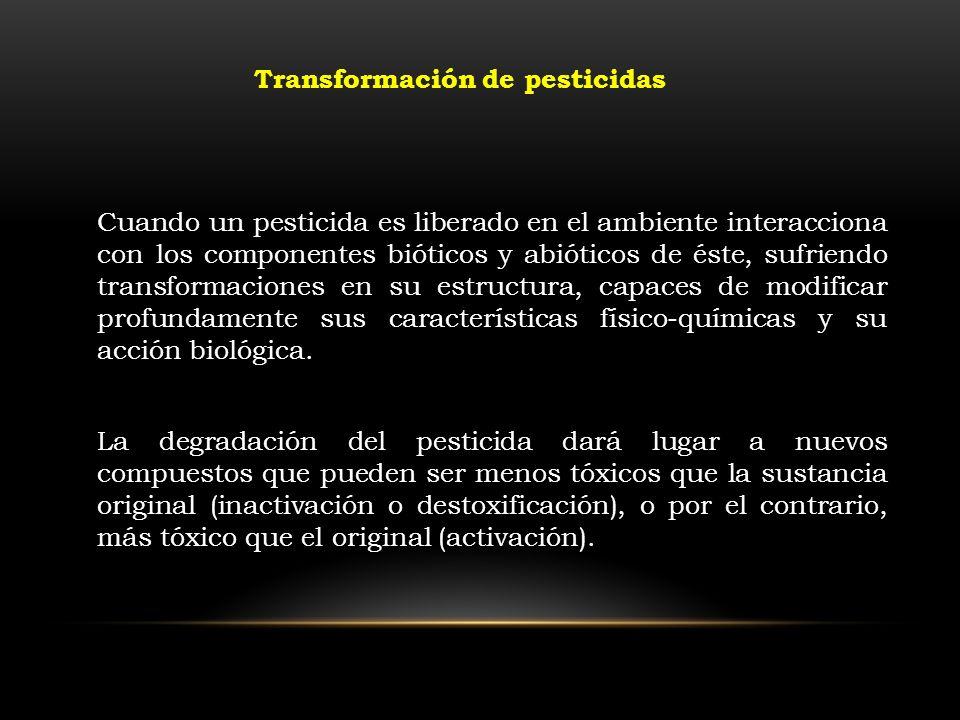 Transformación de pesticidas Cuando un pesticida es liberado en el ambiente interacciona con los componentes bióticos y abióticos de éste, sufriendo t