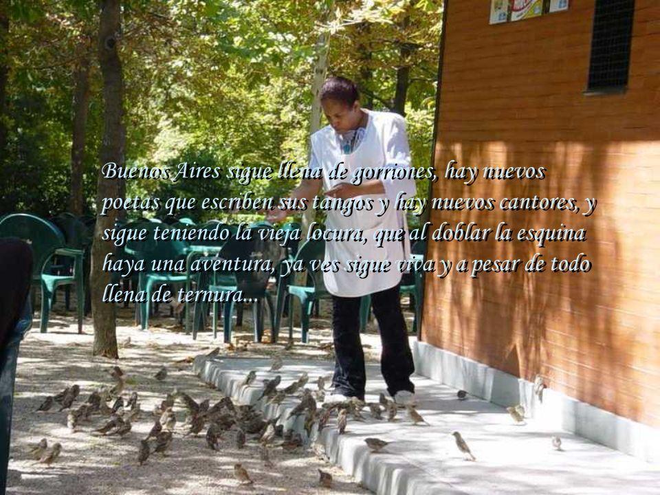 Buenos Aires sigue llena de gorriones, hay nuevos poetas que escriben sus tangos y hay nuevos cantores, y sigue teniendo la vieja locura, que al doblar la esquina haya una aventura, ya ves sigue viva y a pesar de todo llena de ternura...