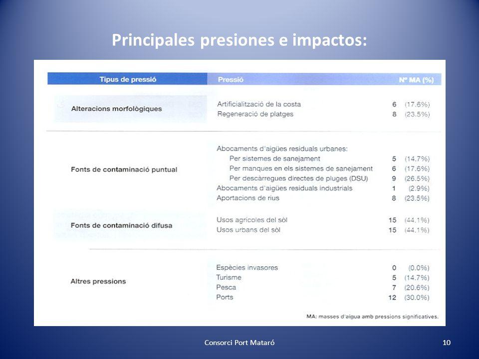 Principales presiones e impactos: Consorci Port Mataró10