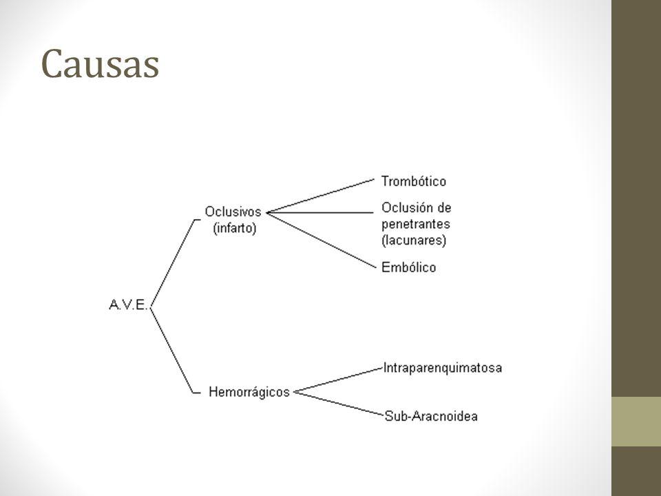 HEMORRAGIA SUBARACNOIDEA I Síntomas Cefalea.Vómitos.