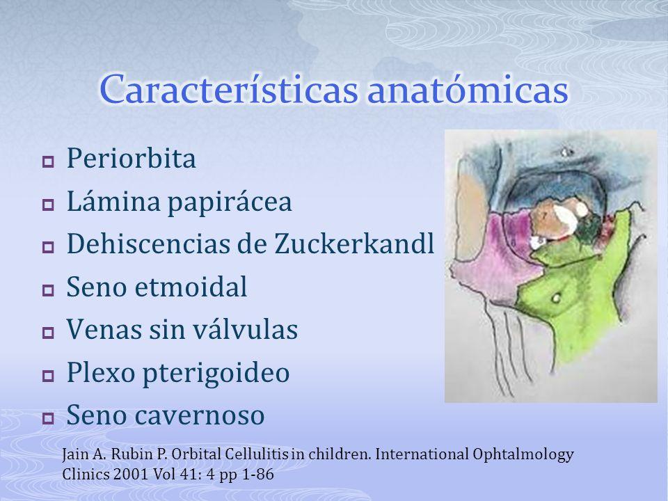 Celulitis Preseptal Celulitis Orbitaria (con o sin complicaciones intracraneales) Absceso orbitario (con o sin complicaciones intracraneanas) Absceso intraorbitario Absceso subperiostico Jain A.
