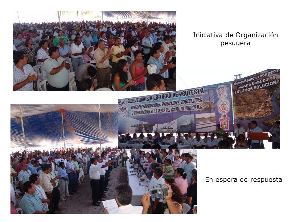 Iniciativa de Organización pesquera En espera de respuesta
