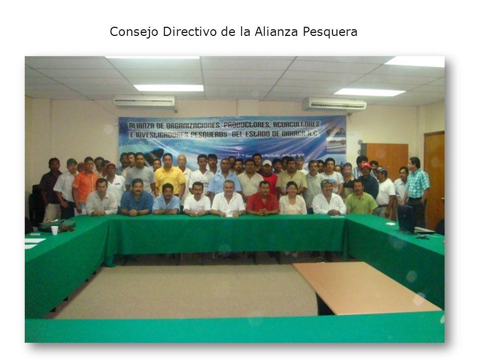 Consejo Directivo de la Alianza Pesquera