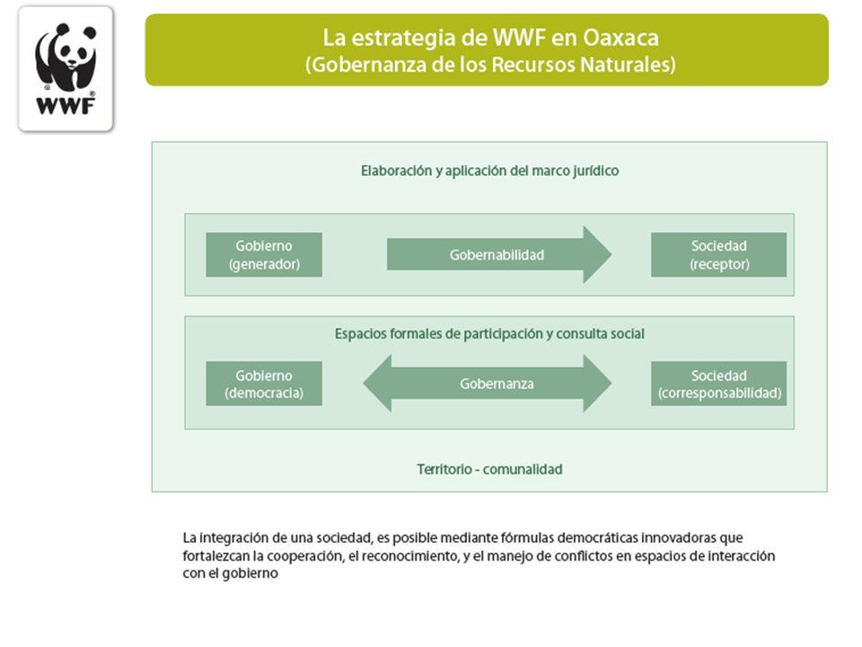 Sistema de Monitoreo Ambiental (en proceso) Monitoreo del Clima Medidas locales de adaptación al Cambio Climático