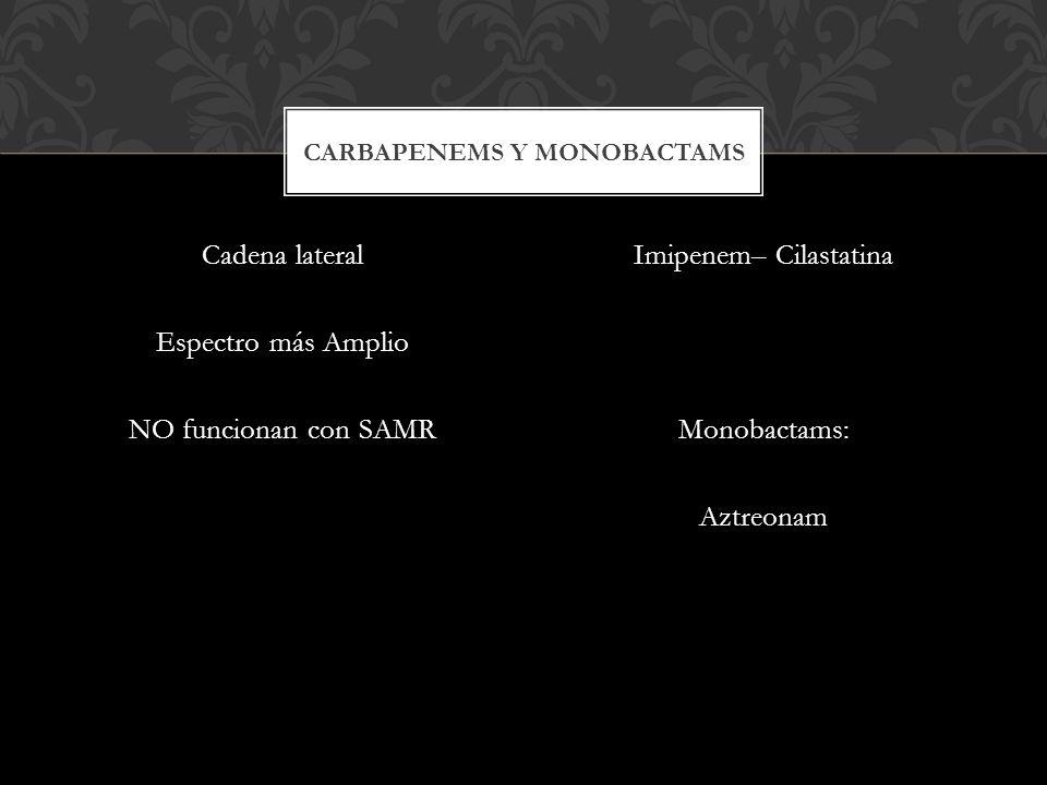 Cadena lateral Espectro más Amplio NO funcionan con SAMR Imipenem– Cilastatina Monobactams: Aztreonam CARBAPENEMS Y MONOBACTAMS