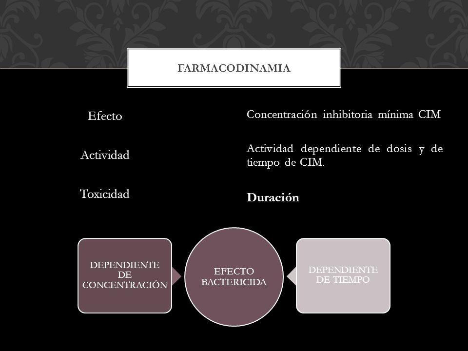 Efecto Actividad Toxicidad Concentración inhibitoria mínima CIM Actividad dependiente de dosis y de tiempo de CIM.Duración FARMACODINAMIA EFECTO BACTE