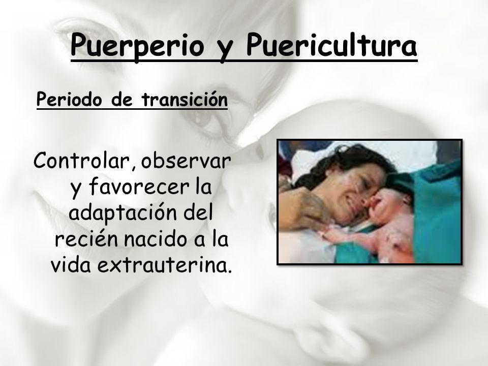 Puerperio y Puericultura Periodo de transición Controlar, observar y favorecer la adaptación del recién nacido a la vida extrauterina.